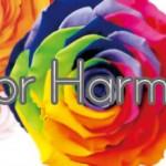 「フラワーデザイン基礎講座」花選び、花合わせに役立つ色の知識と4つの配色組み合わせのルール